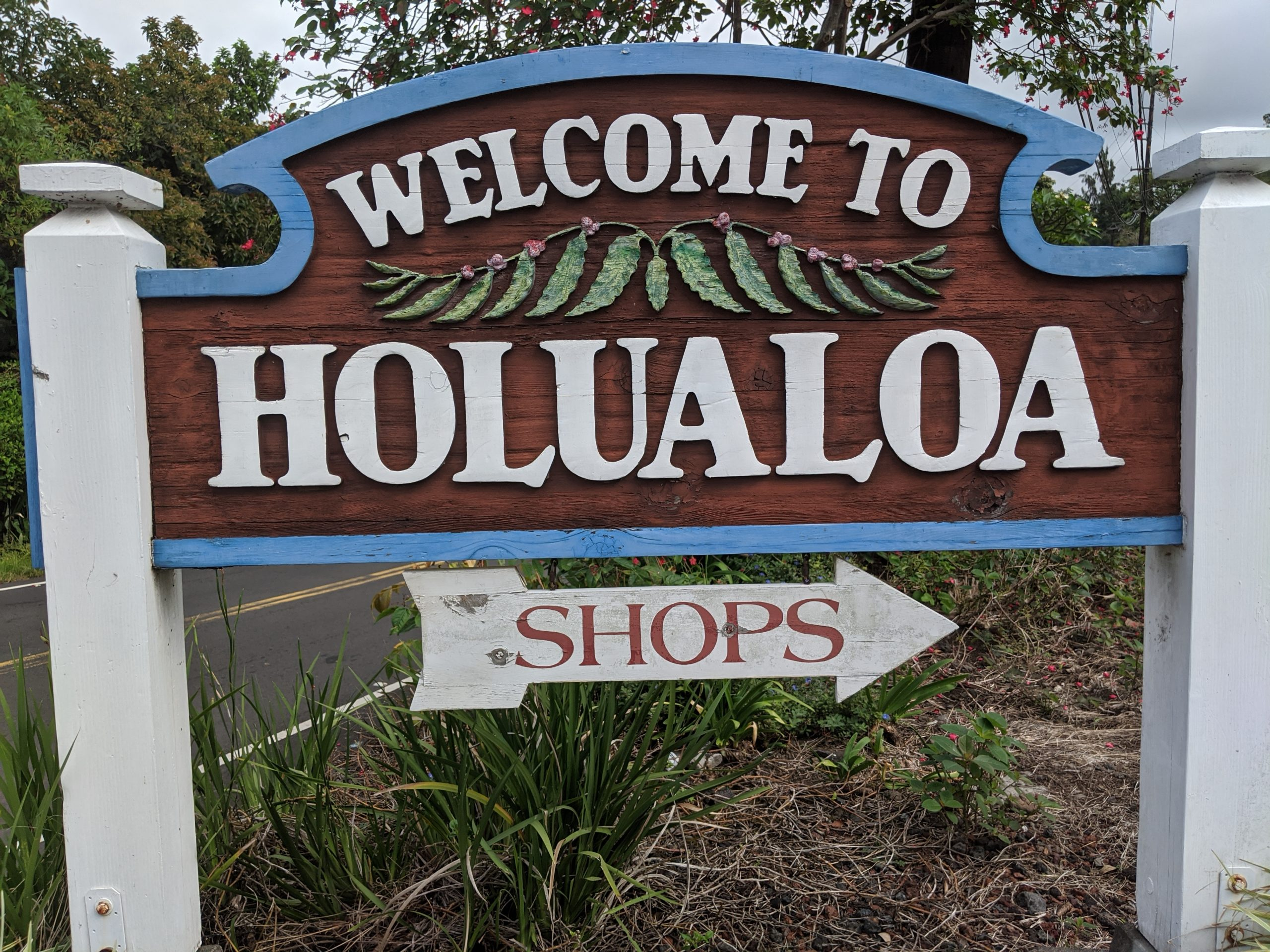 Holualoa homes